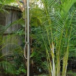 Outdoor shower, Lagoon St Narrabeen NSW