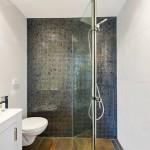 Bathroom Shower near frameless glass shower screen